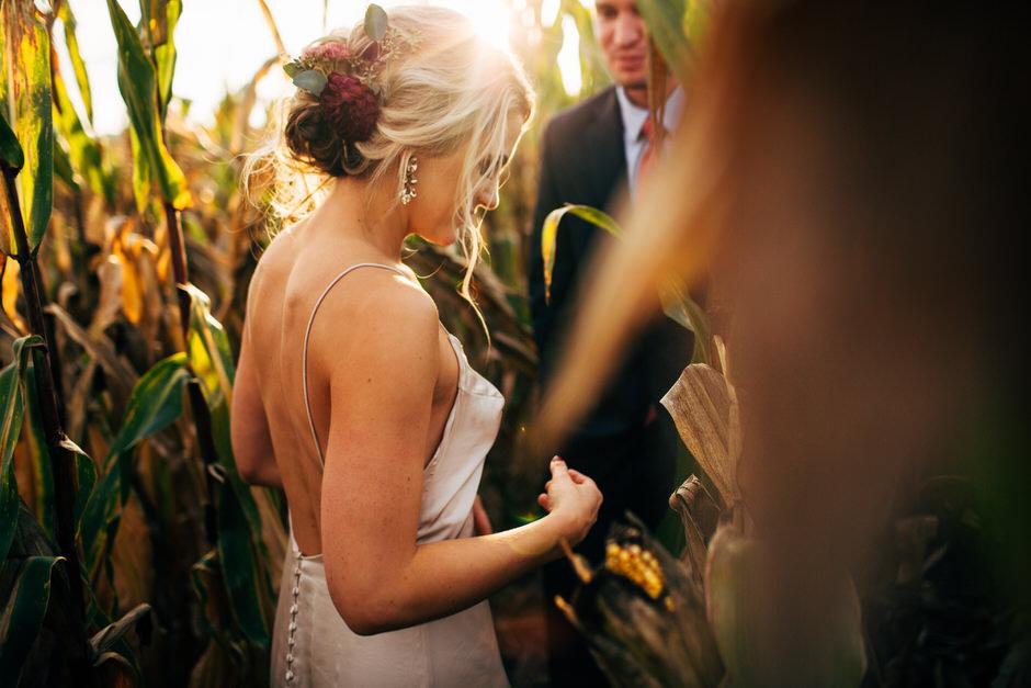 bride and groom in corn stalks