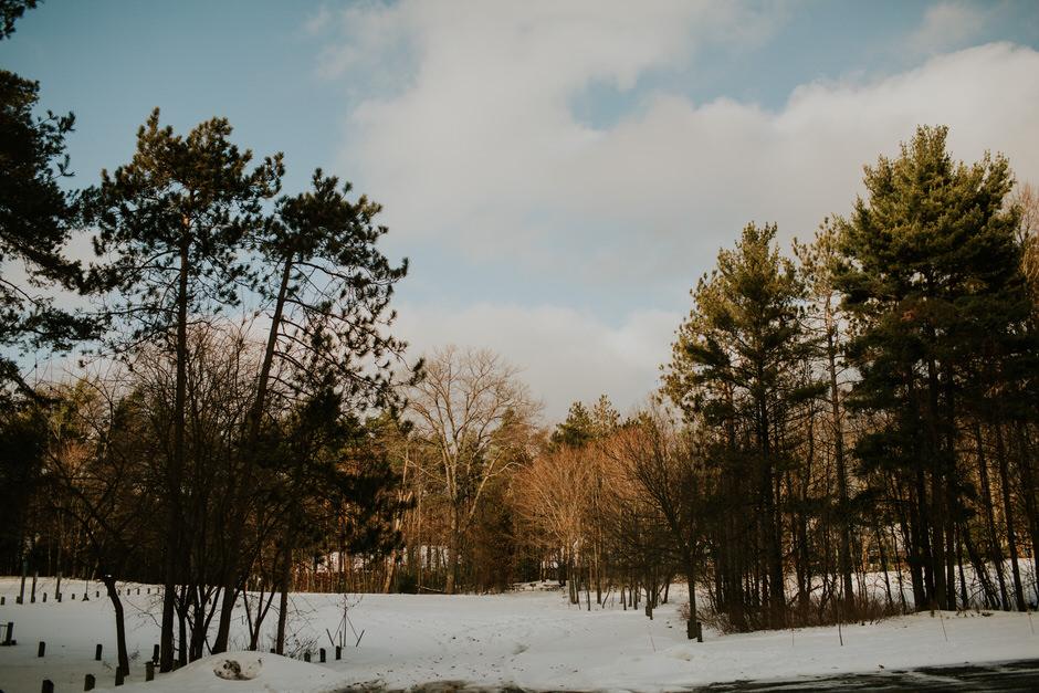 michigan winter landscape