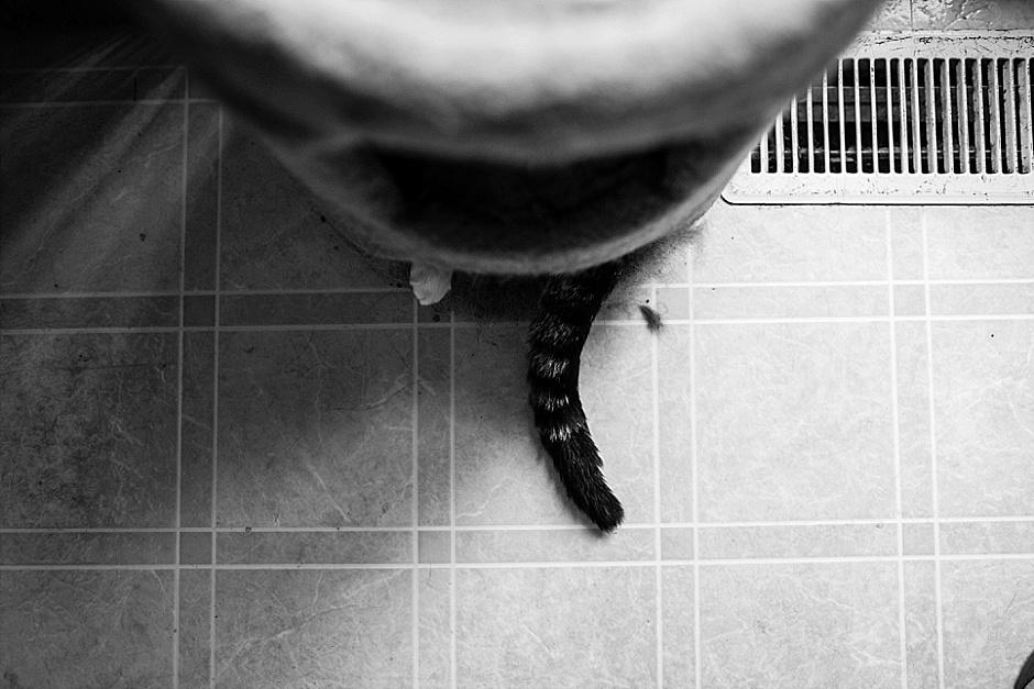 photographythatgivesback01
