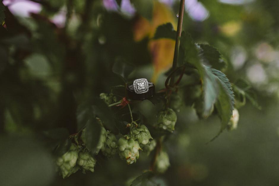 wedding rings in hops flowers