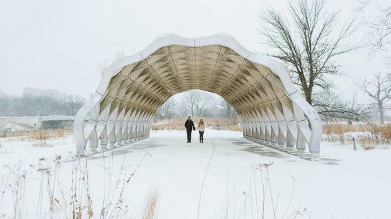 Lincoln Park Engagement